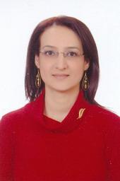nmdogan